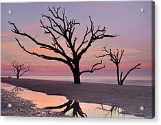 Botany Bay Trees Acrylic Print