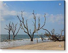 Botany Beach Acrylic Print