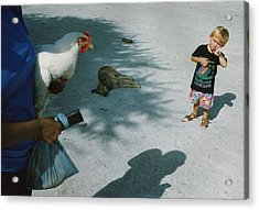 Botswana 1994 Acrylic Print by Rolf Ashby