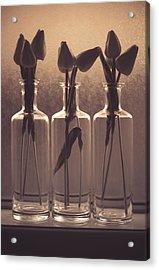 Bottled Love Full - North  Acrylic Print