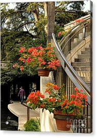 Bougainvilla On Riverwalk Acrylic Print