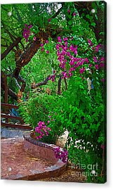 Bougainvillea In The Courtyard Acrylic Print