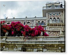 Bougainvillea On Balcony In Lisbon  Acrylic Print