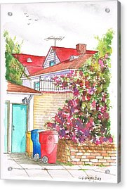 Bougainvilleas And Trash Cans In Westwood - California Acrylic Print by Carlos G Groppa