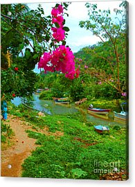 Bouganvilla Watches Over Village Fishing Boats Acrylic Print by ARTography by Pamela Smale Williams