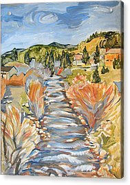 Boulder Creek Nederland Co Acrylic Print by Al Hart