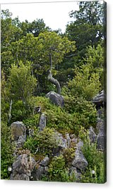 Acrylic Print featuring the photograph Boulder Green by Cathy Shiflett
