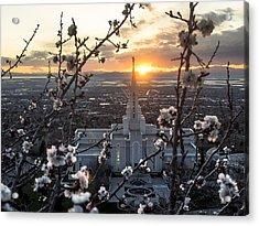 Bountiful Spring Acrylic Print