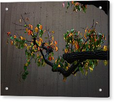 Bouquet From Autumn Leaves.three. Acrylic Print by Viktor Savchenko