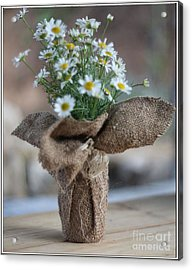 Bouquet Of Chamomile  Acrylic Print by Petko Pemaro