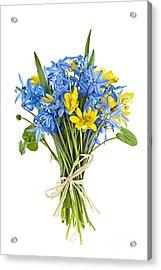 Bouquet Of Fresh Spring Flowers Acrylic Print by Elena Elisseeva