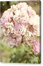 Bouquet Of Vintage Roses Acrylic Print by Juli Scalzi