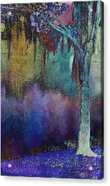 Bouyant Reflections Acrylic Print by Jan Amiss Photography