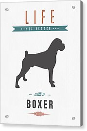 Boxer 01 Acrylic Print by Aged Pixel
