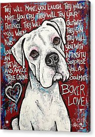 Boxer Love Acrylic Print