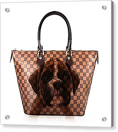 Boxer Pup Hand Bag Painting Acrylic Print by Marvin Blaine