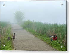 Boy Photographing A Pair Of Geese Acrylic Print