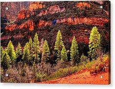 Boynton Canyon Acrylic Print
