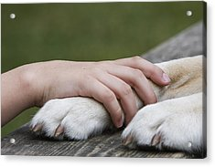 Boy's Hand Resting On His Dog's Paw Acrylic Print by Compassionate Eye Foundation/Jetta Productions