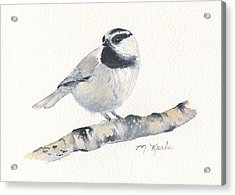 Bozeman Native - Mountain Chickadee Acrylic Print