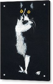 Bozette Acrylic Print by Jocelyn Paine