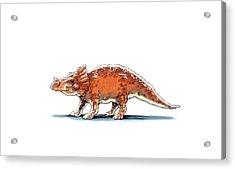 Brachyceratops Dinosaur Acrylic Print