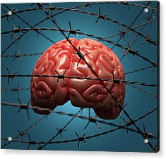 Brain And Barbed Wire Acrylic Print by Ktsdesign