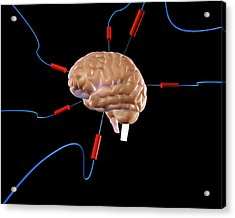 Brain Experiment Acrylic Print by Christian Darkin