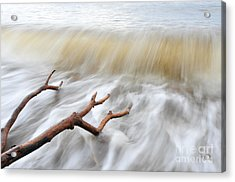 Acrylic Print featuring the photograph Branches In Water by Randi Grace Nilsberg