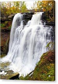 Brandywine Falls Acrylic Print by David Yunker