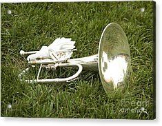 Acrylic Print featuring the photograph Brass In Grass by Carol Lynn Coronios