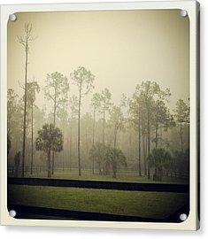 Break Of Dawn Acrylic Print by Chasity Johnson