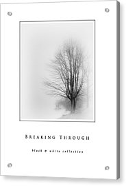 Breaking Through  Black And White Collection Acrylic Print