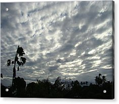 Breaking Through Acrylic Print by Zinvolle Art