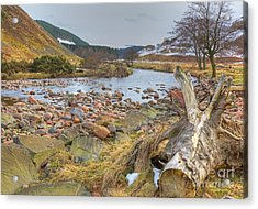 Breamish Valley Landscape Acrylic Print by David Birchall