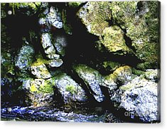 Breathing... Waiting...   Acrylic Print by Rich Collins