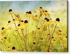 Breeze Acrylic Print by Elaine Manley