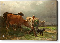 Breton Lad With Cattle Acrylic Print by Julius Caesar Ibbetson