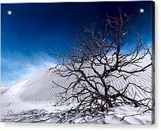 Brewing Sand Storm Acrylic Print