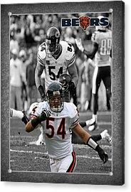 Brian Urlacher Bears Acrylic Print by Joe Hamilton