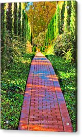 Acrylic Print featuring the photograph Brick Path by Joseph Hollingsworth
