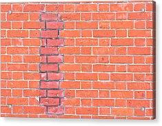 Brick Wall Repair Acrylic Print by Tom Gowanlock