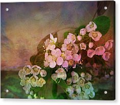 Bridal Memories Acrylic Print by Shirley Sirois