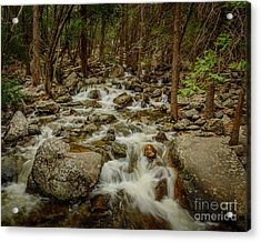 Bridalveil Creek In Yosemite Acrylic Print by Terry Garvin