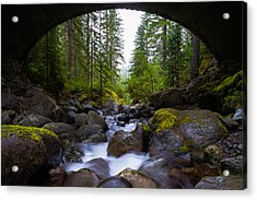 Bridge Below Rainier Acrylic Print by Chad Dutson