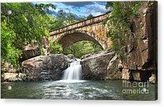 Bridge Falls Acrylic Print by Shannon Rogers