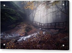 Bridge In Mystical Forest. Acrylic Print