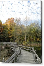 Bridge Into Autumn Acrylic Print by Guy Ricketts