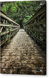 Bridge Leading Into The Bamboo Jungle Acrylic Print