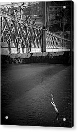 Bridge Over Douro - Luis I Acrylic Print
